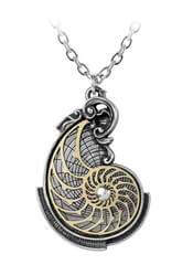 Fibonacci's Golden Spiral