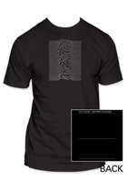 Unknown Pleasures 1